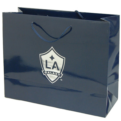 glossy laminated paper bags with printed logo